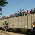 The migrants climb aboard the train heading north.